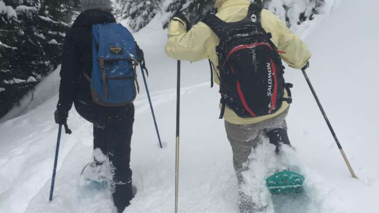 Snowshoes hiking